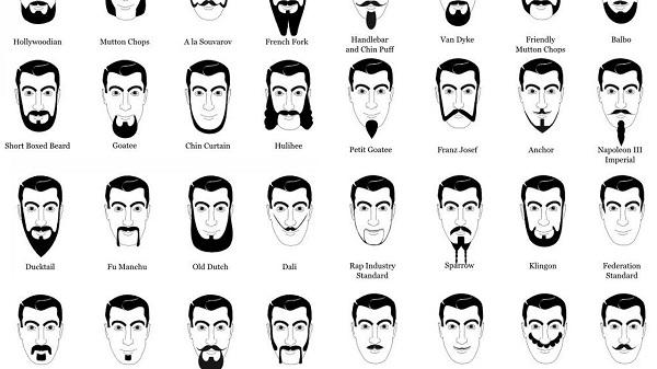 Stupendous Beard Styling Tips How To Choose A Beard Style Beard Oil Recipes Short Hairstyles Gunalazisus