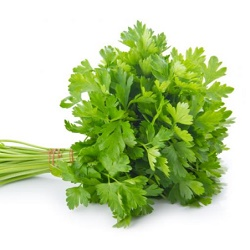 How To Make Beard Grow Thicker - Parsley